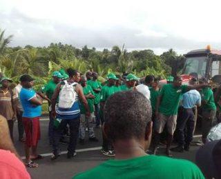 Victoria de l@s trabajador@s en la huelga del plátano en Guadalupe