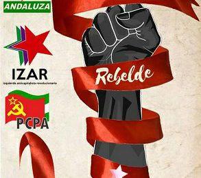 Izquierda Anticapitalista Revolucionaria IZAR apoya a Almería rebelde el 26 de mayo