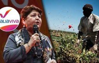 La explotación de l@s trabajador@s agrícolas y la obscena hipocresía de la moral burguesa en Italia